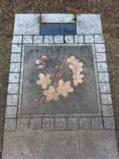 皇居47都道府県