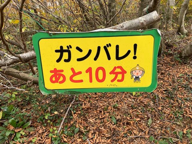 浄法寺山6